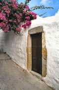 Bougainvillea Door
